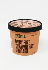 Righteous Gelato Righteous Sorbetto - Dairy Free Sorbetto, Strawberry Rhuharb (106ml)