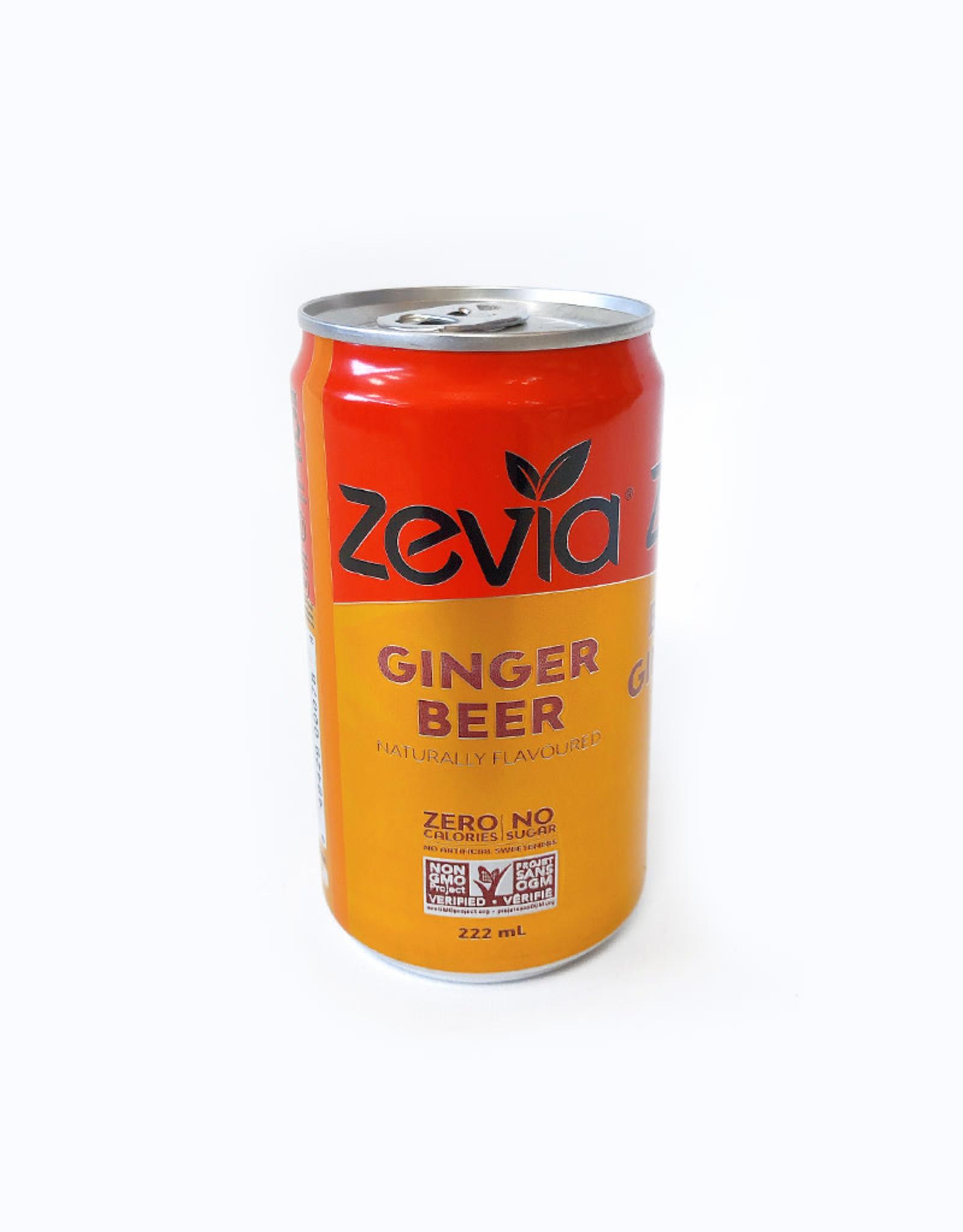 Zevia Soda Zevia - Mixer, Ginger Beer (single)
