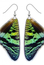 Asana Natural Arts Sunset Moth Top Wing  Earrings, Laminated - Asana Natural Arts