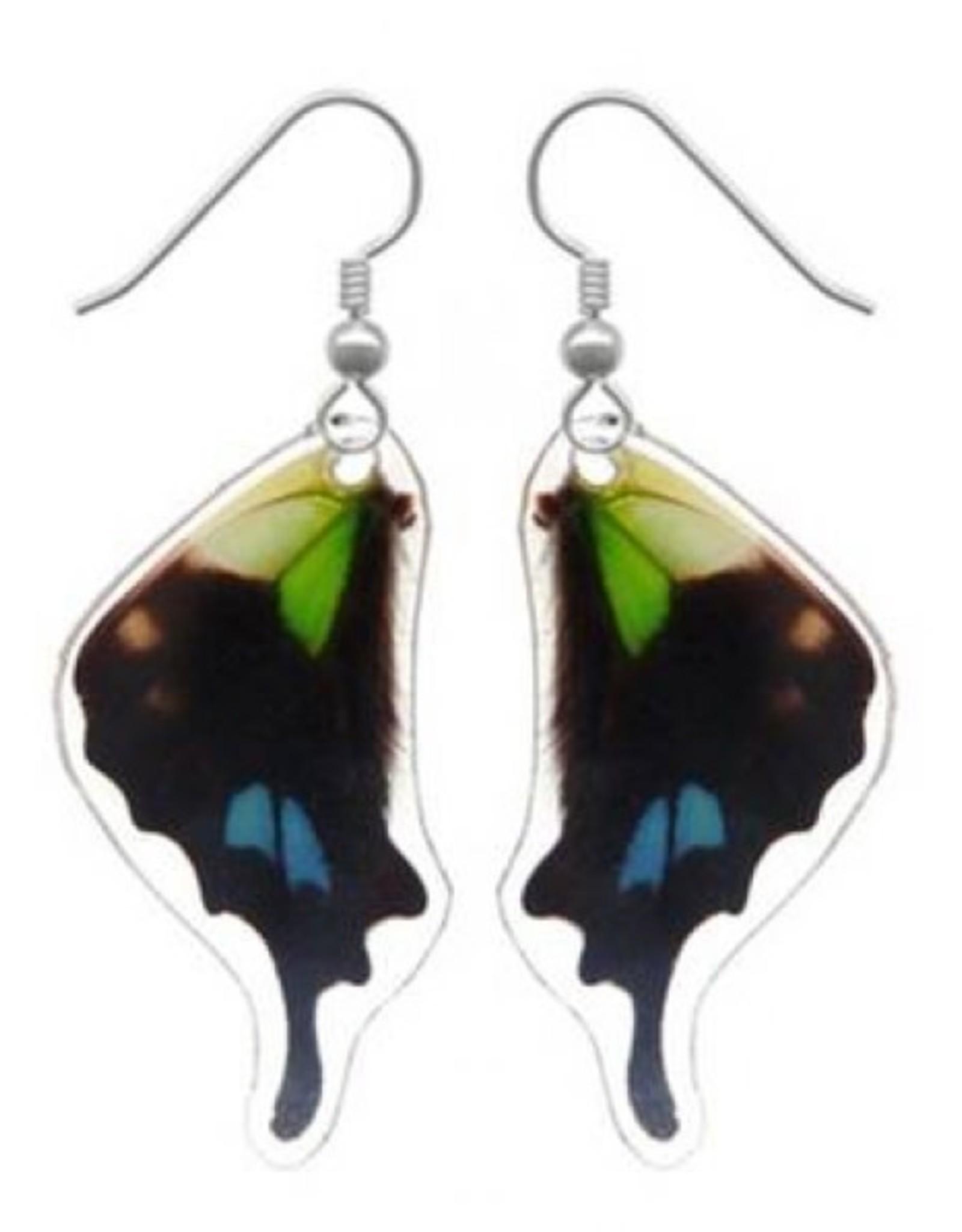 Asana Natural Arts Graphium Weiskei Bottom Wing Earrings,  Resin Coated - Asana Natural Arts