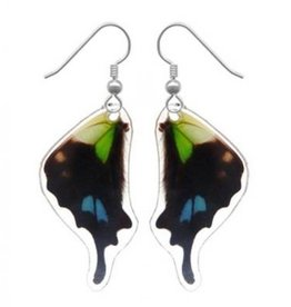 Asana Natural Arts Graphium Weiskei Bottom Wing Earrings,  Resin Coated - Asana Natural Arts