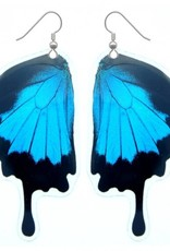 Asana Natural Arts Papilio Ulysses Butterfly Bottom Wing Earrings,  Laminated - Asana Natural Arts