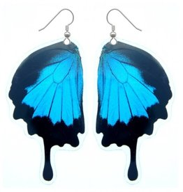 Asana Natural Arts Papilio Ulysses Butterfly Bottom Wing Earrings,  Laminated - Asana Natural Arts