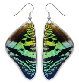 Asana Natural Arts Sunset Moth Top Wing Earrings, Resin - Asana Natural Arts