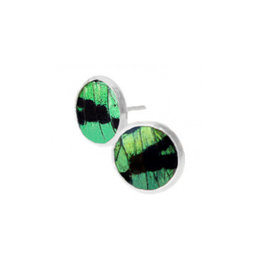 Asana Natural Arts Sunset Moth Wing Post Earrings, Green - Asana Natural Arts