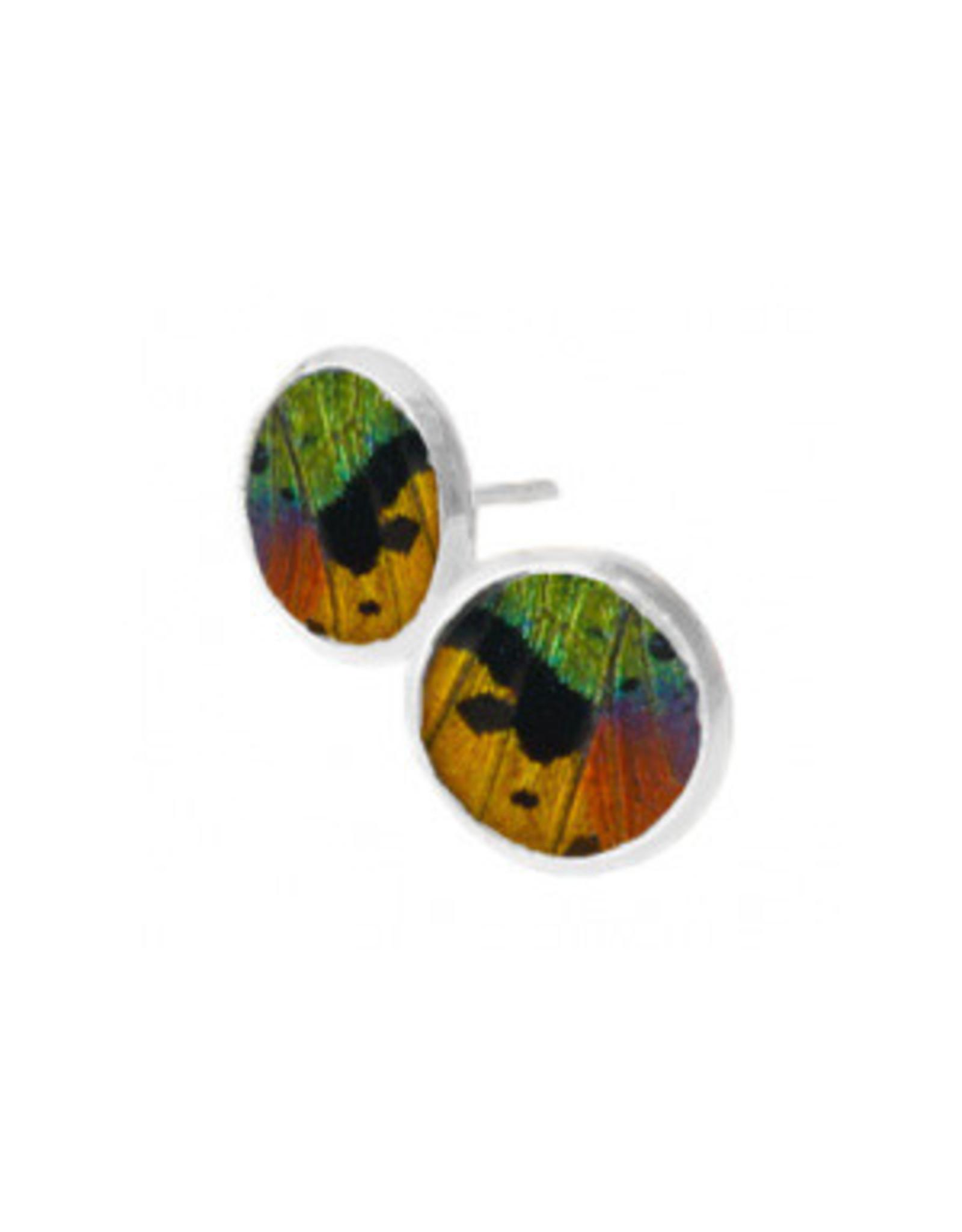 Asana Natural Arts Sunset Moth Wing Post Earrings, Rainbow - Asana Natural Arts