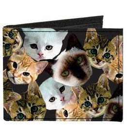 Buckle Down Belts Kitten Faces Canvas Bi-Fold Wallet