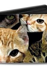 Buckle Down Belts Kitten Faces Bi-Fold Vinyl Wallet