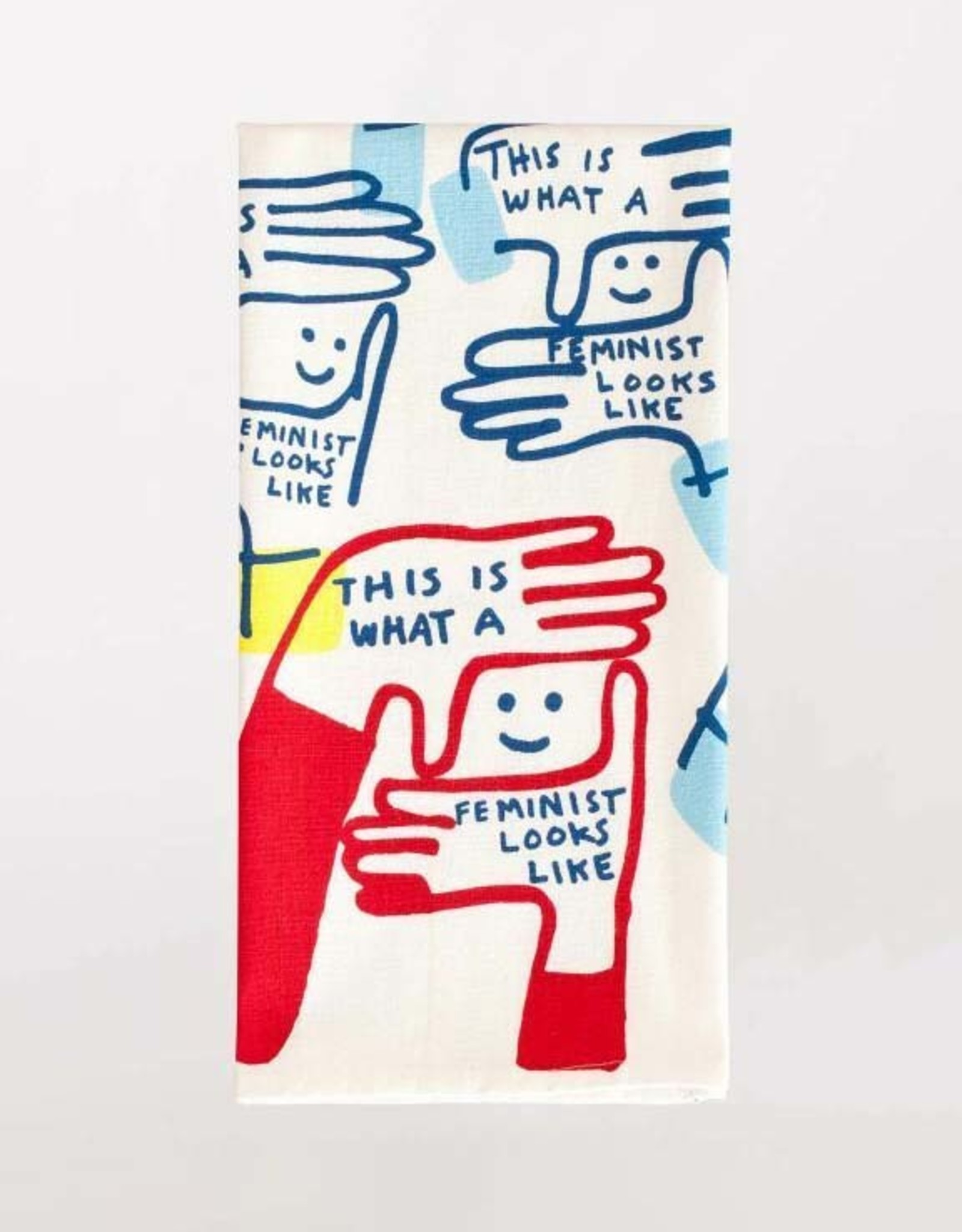 Blue Q Dish Towel:  This is What a Feminist Looks Like