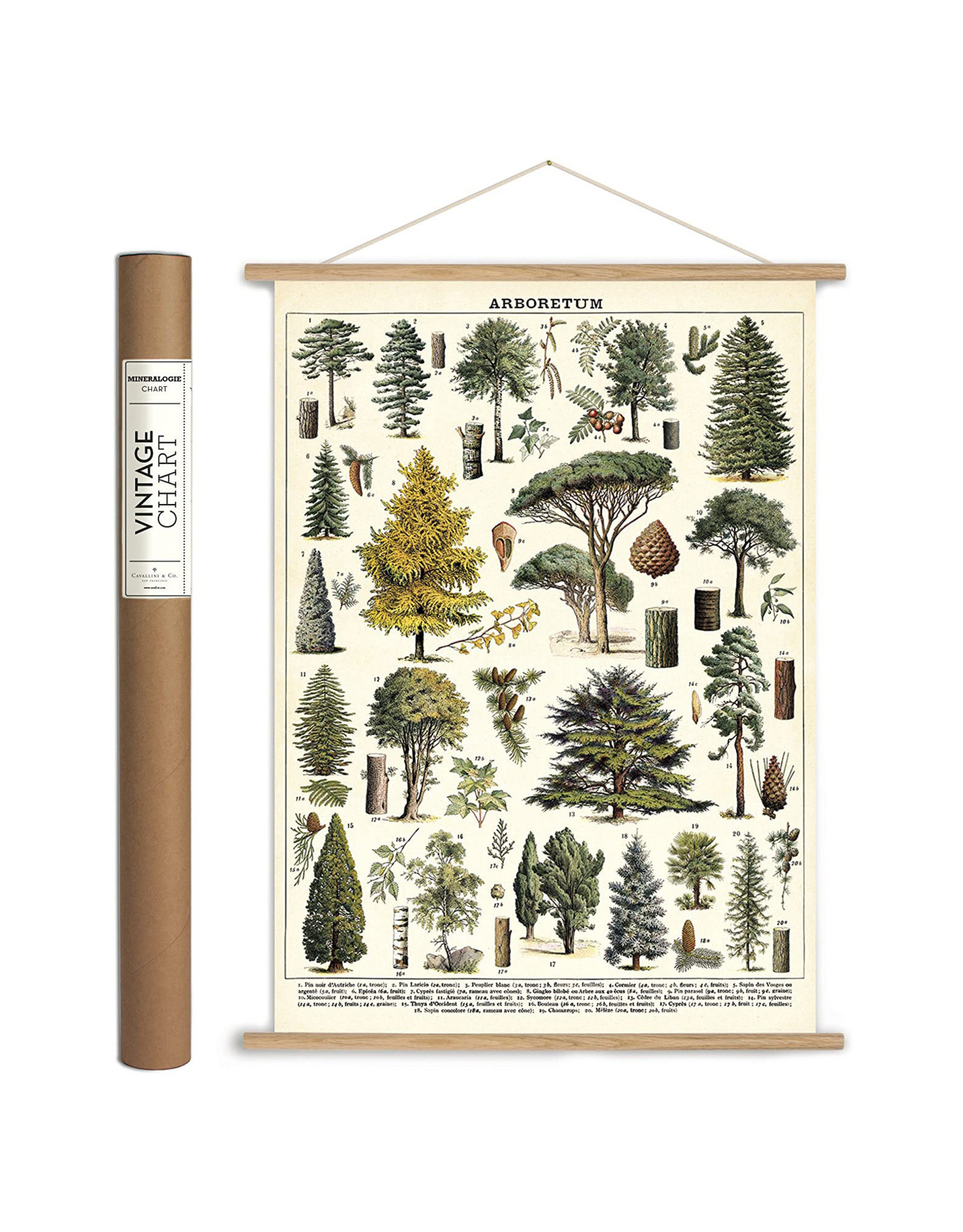 Cavalini Papers DIY Vertical Poster Hanging Kit