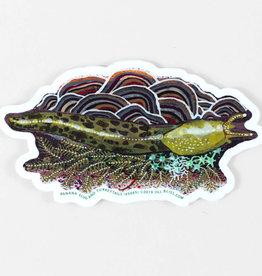 Banana Slug Sticker - Jill Bliss