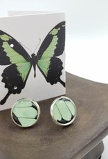 Asana Natural Arts Papilio Phorcas Post Earrings - Upper Wing Resin Silver Plate