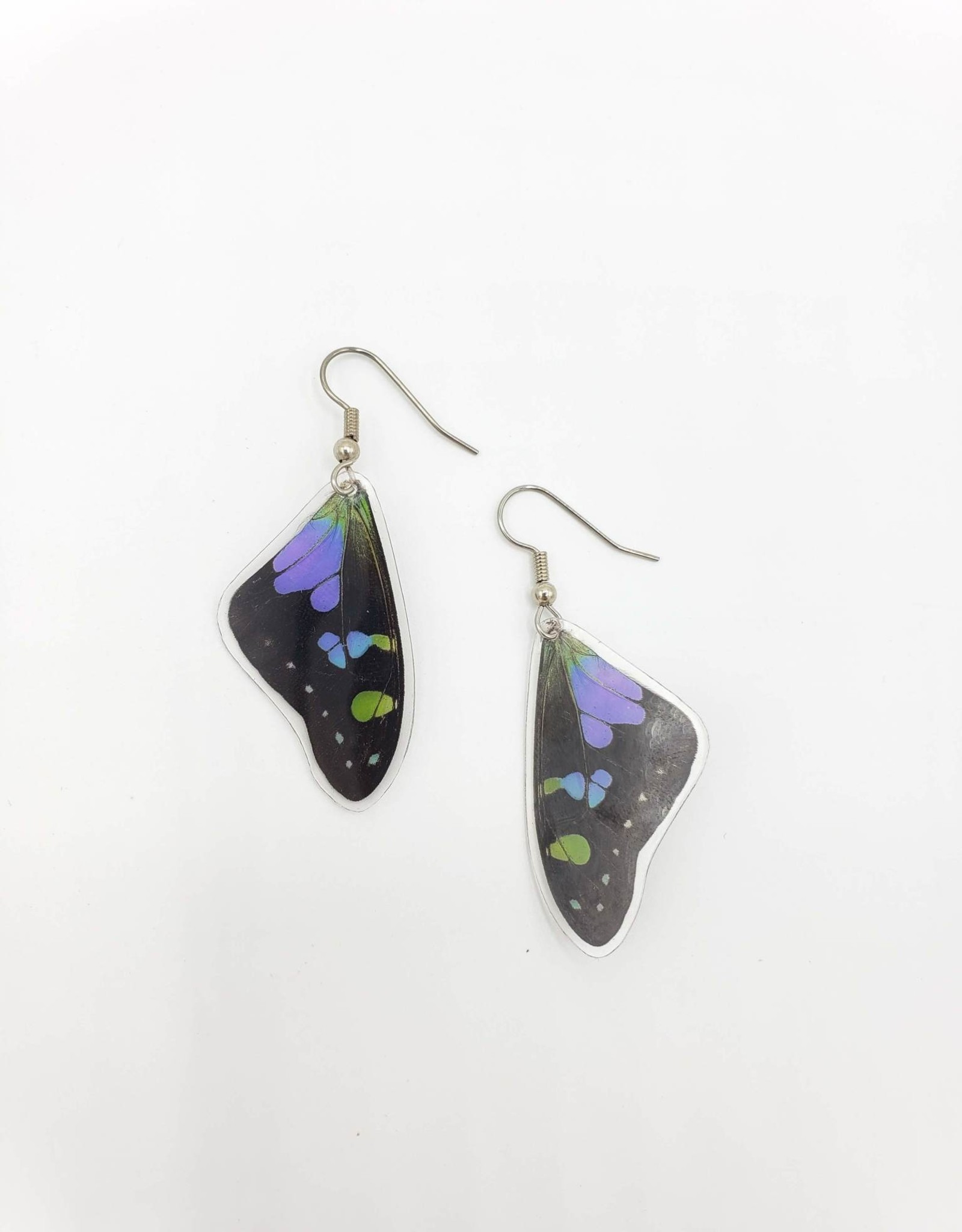 Asana Natural Arts Graphium Weiskei Laminated Butterfly Earrings