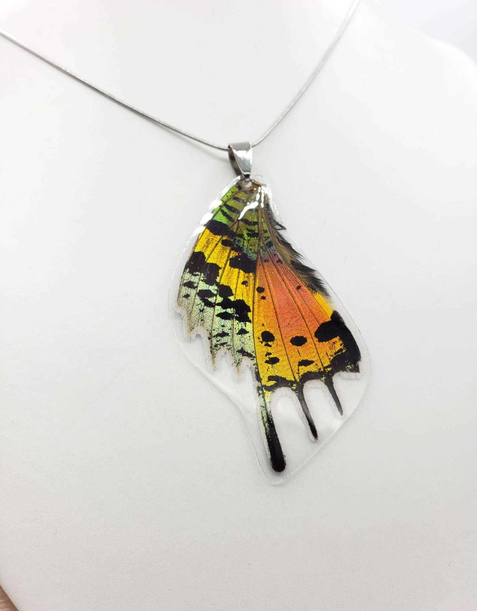 Asana Natural Arts Sunset Moth Laminated Butterfly Wing Necklace