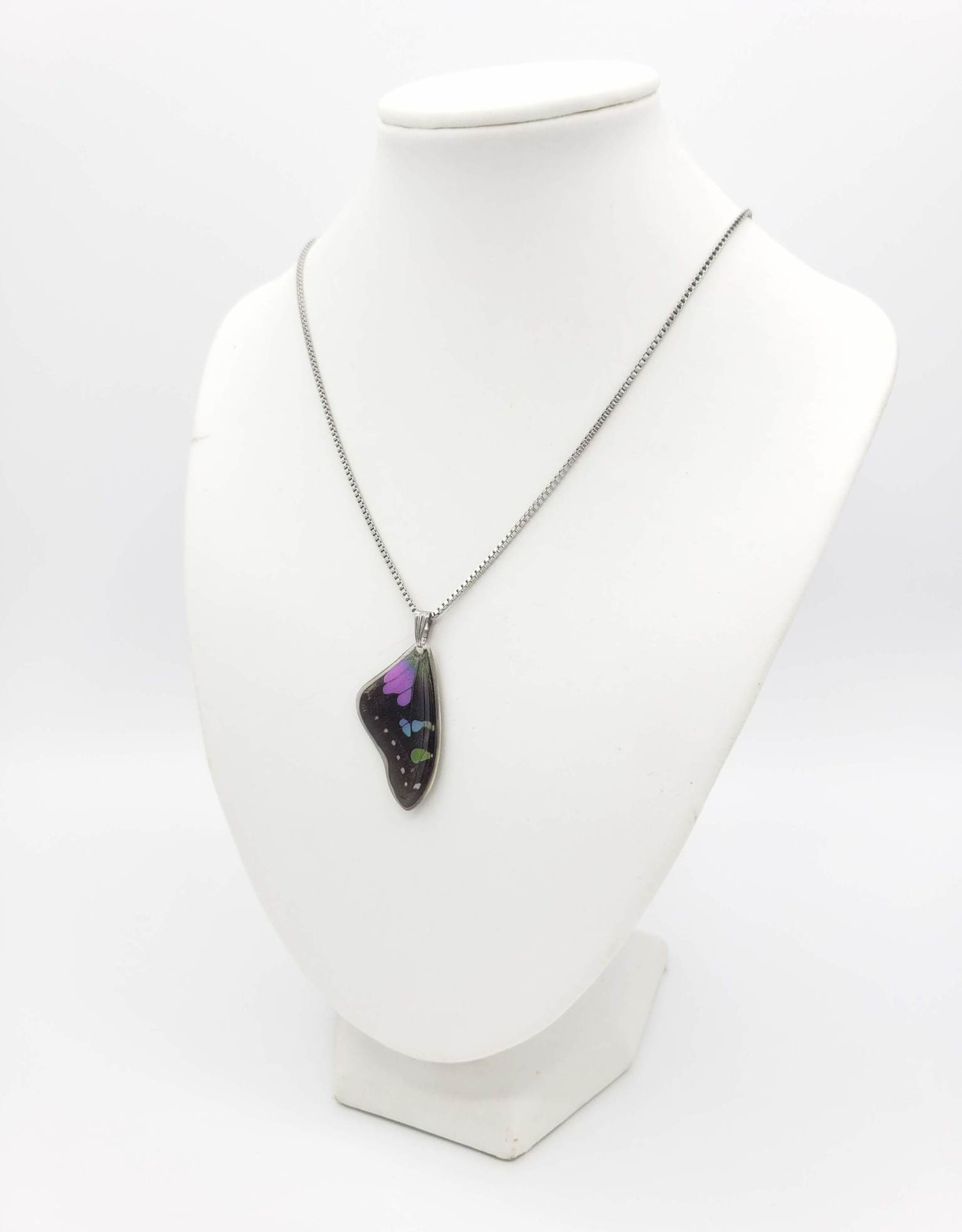 Asana Natural Arts Graphium Weiskei Resin Coated Butterfly Wing Necklace