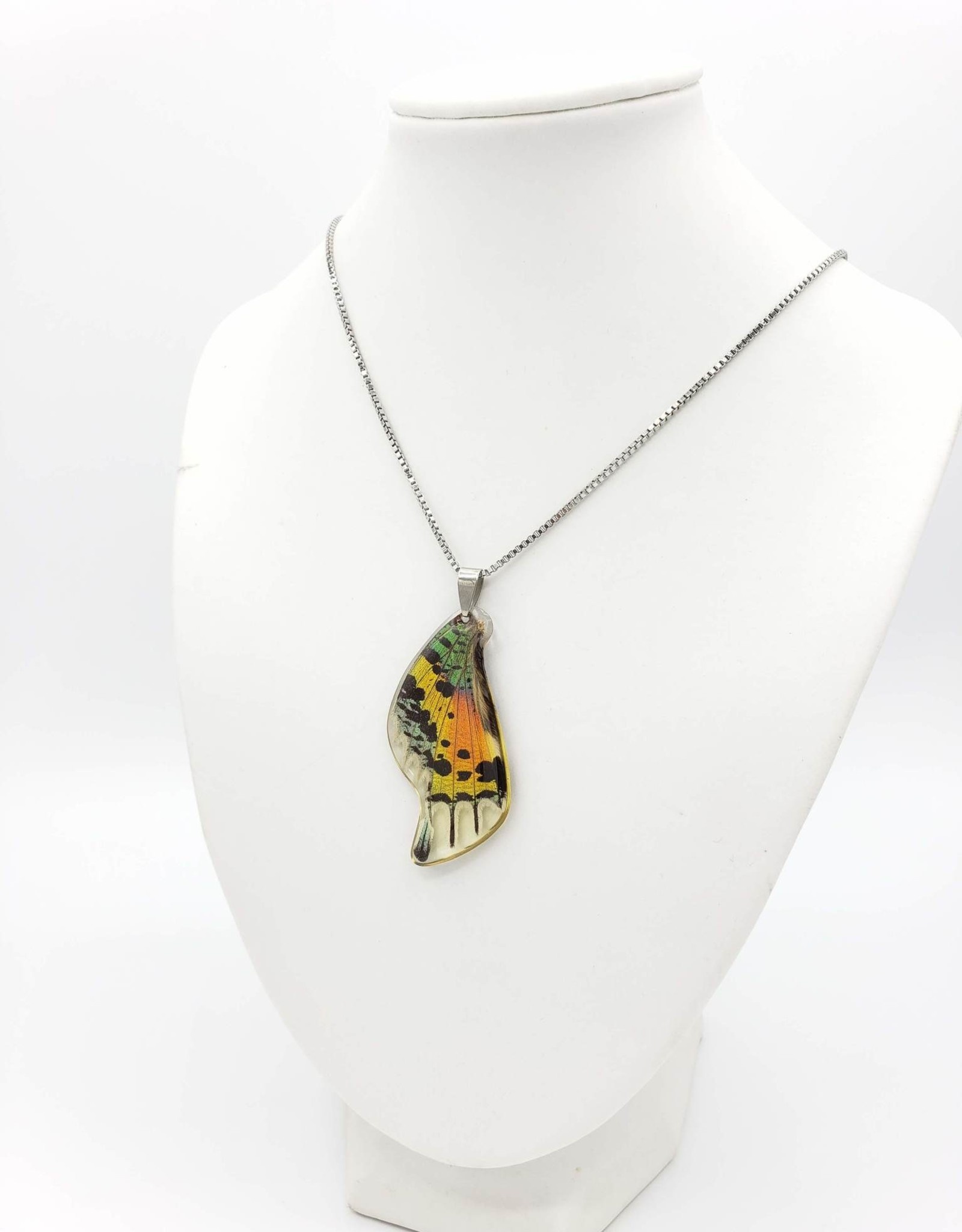 Asana Natural Arts Sunset Moth Resin Coated Butterfly Wing Necklace