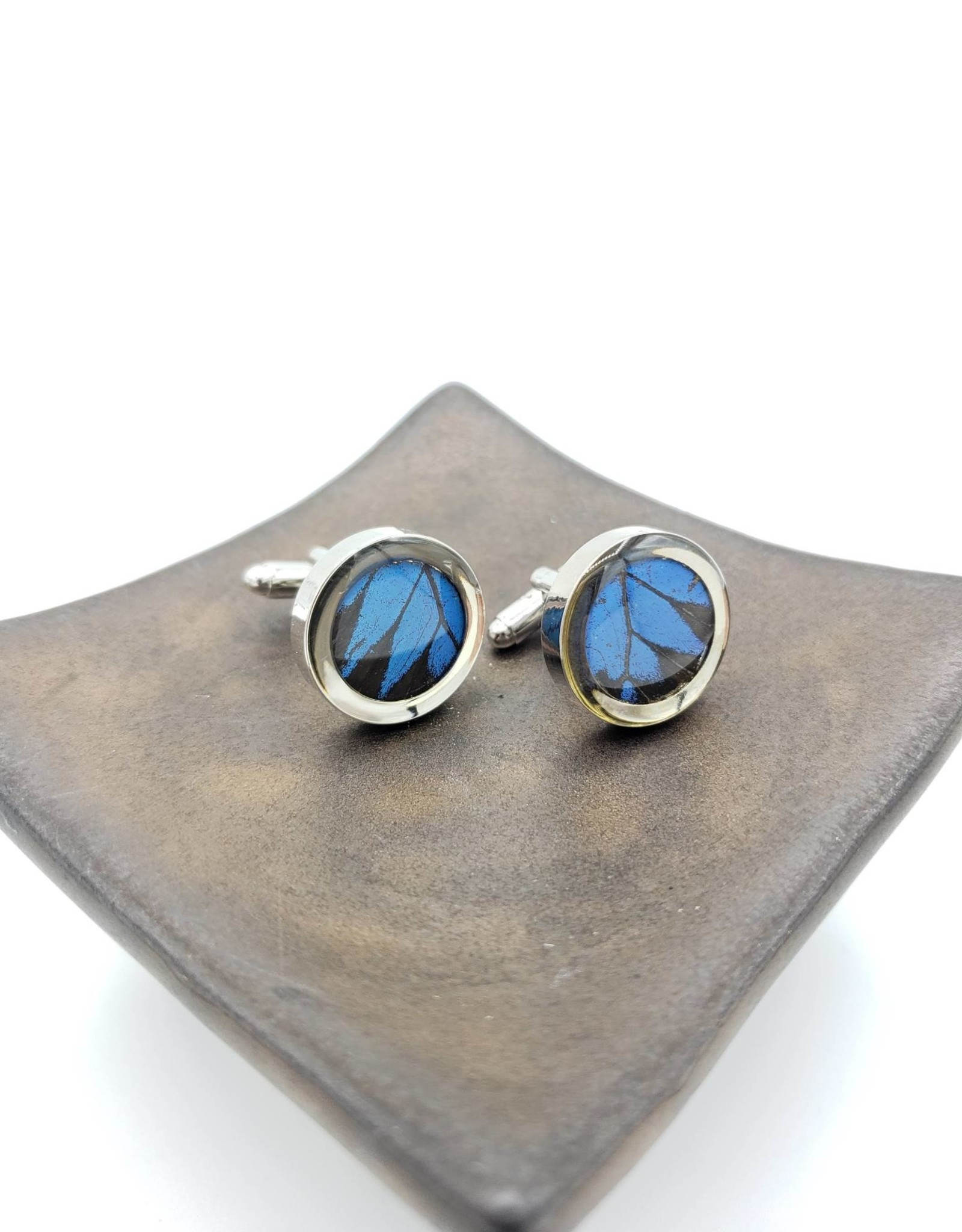 Asana Natural Arts Stainless Steel Butterfly Wing Cufflinks - Papilio Ulysses