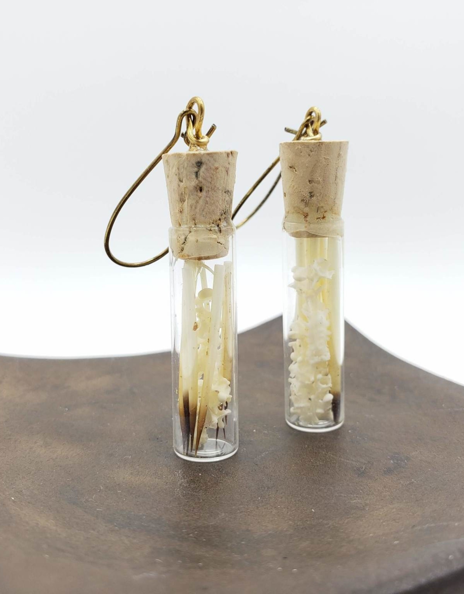 Redux Glass Vial Earrings with Bones and Porcupine Quills