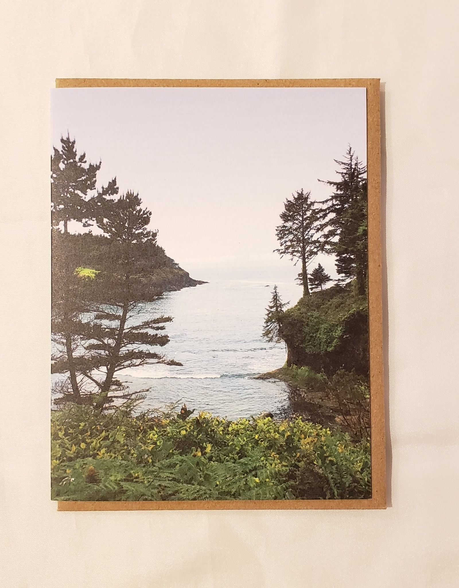 Whale Cove, Oregon Coast Greeting Card - Little Lark