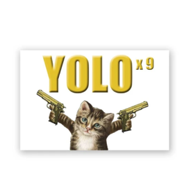 "Mincing Mockingbird ""YOLO"" Magnet by the Mincing Mockingbird"