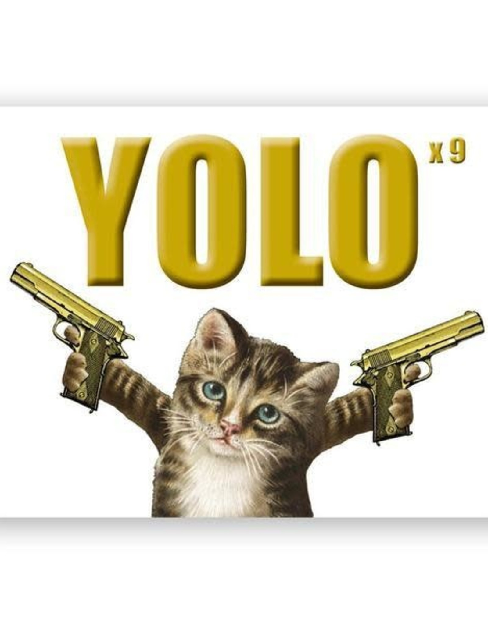 Mincing Mockingbird YOLO Cat Greeting Card - The Mincing Mockingbird