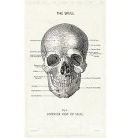 Cavallini Papers Skull Tea Towel by Cavallini