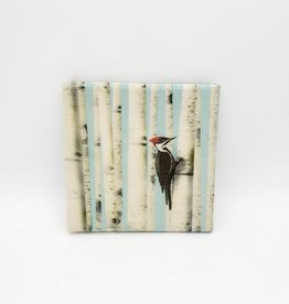 Woodpecker and Birch trees Drink Coaster