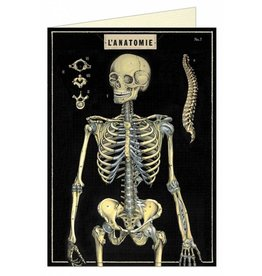 Cavallini Papers L' Anatomie Skeleton Greeting Card - Cavallini Papers