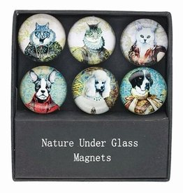 Pets in Costumes Glass Magnet Set of 6