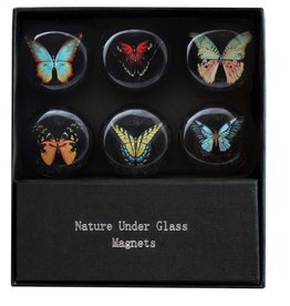 Midnight Butterfly Magnet Set of 6