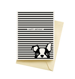 Seltzer Boston Terrier Dog Stripes Birthday Greeting Card - Seltzer