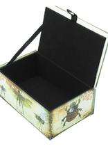 Glass Box Dragonfly