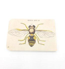 Cavallini Papers Honeybee Notebook, Mini - Cavallini