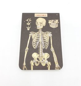 Cavallini Papers Skeleton Notebook, Mini - Cavallini