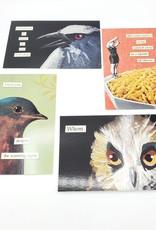 Mincing Mockingbird Snarky Bird Postcard Pack of 4 - The Mincing Mockingbird
