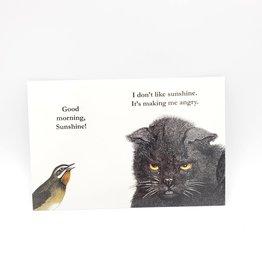 Mincing Mockingbird Morning Sunshine Postcard - The Mincing Mockingbird