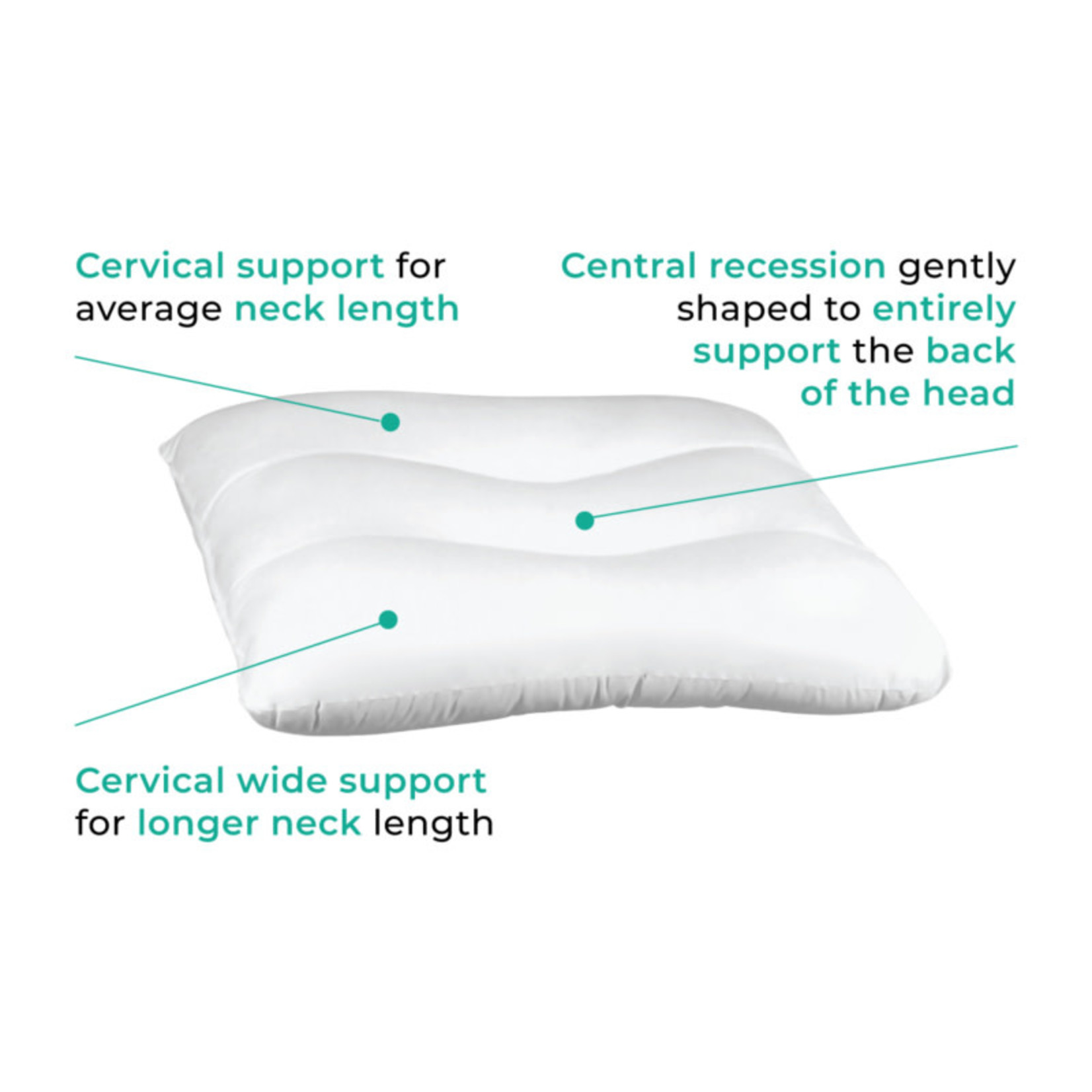 Ortho Cerv Cervical Pillow