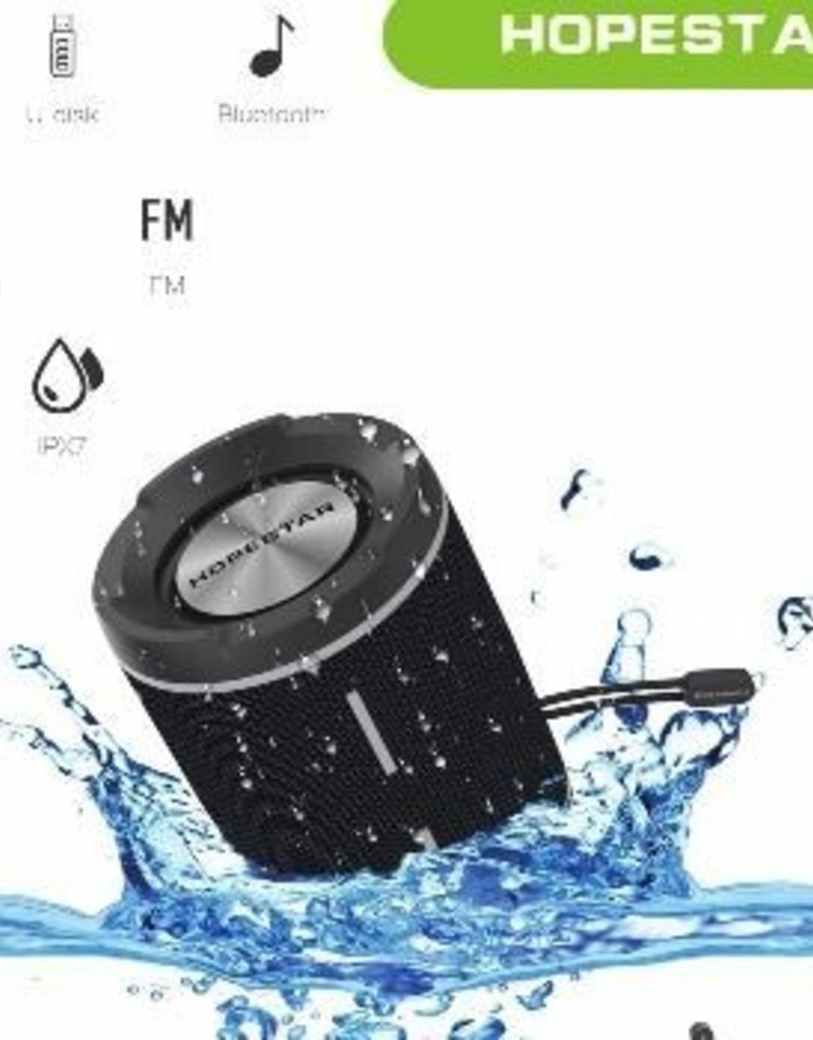 HopeStar HOPESTAR P1 Speaker