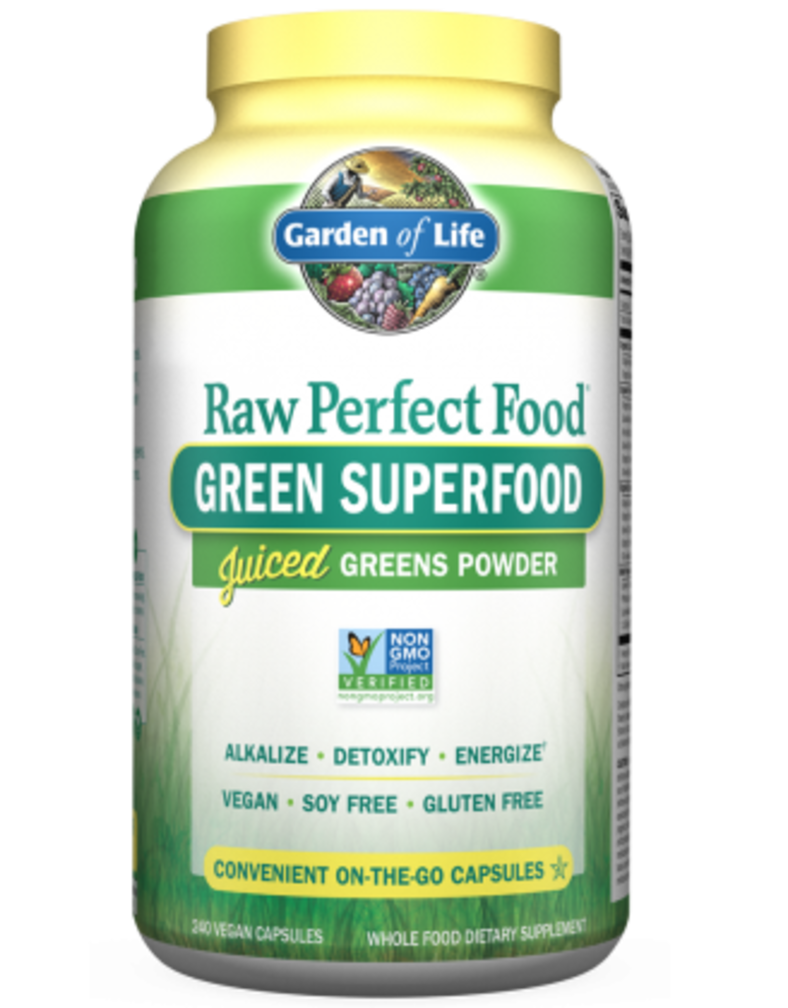 Garden Of Life Raw Perfect Food Green Superfood 240ct