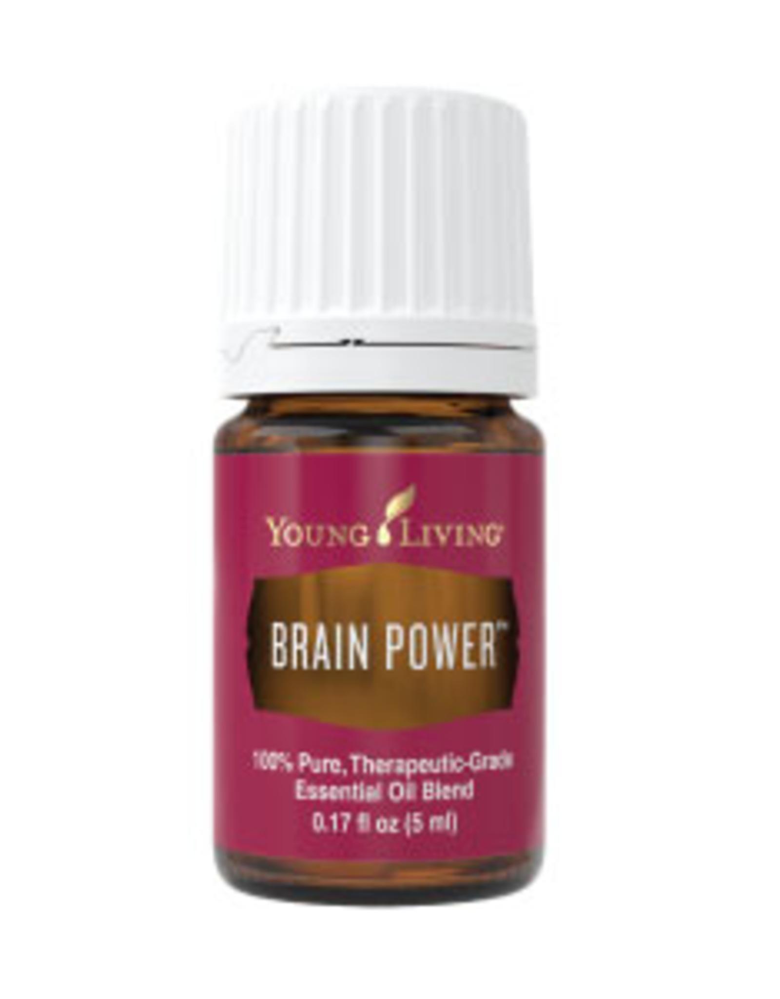 Young Living Brain Power YL 5 ml
