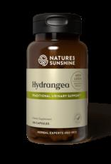 Nature's Sunshine Hydrangea (100 caps) (ko)
