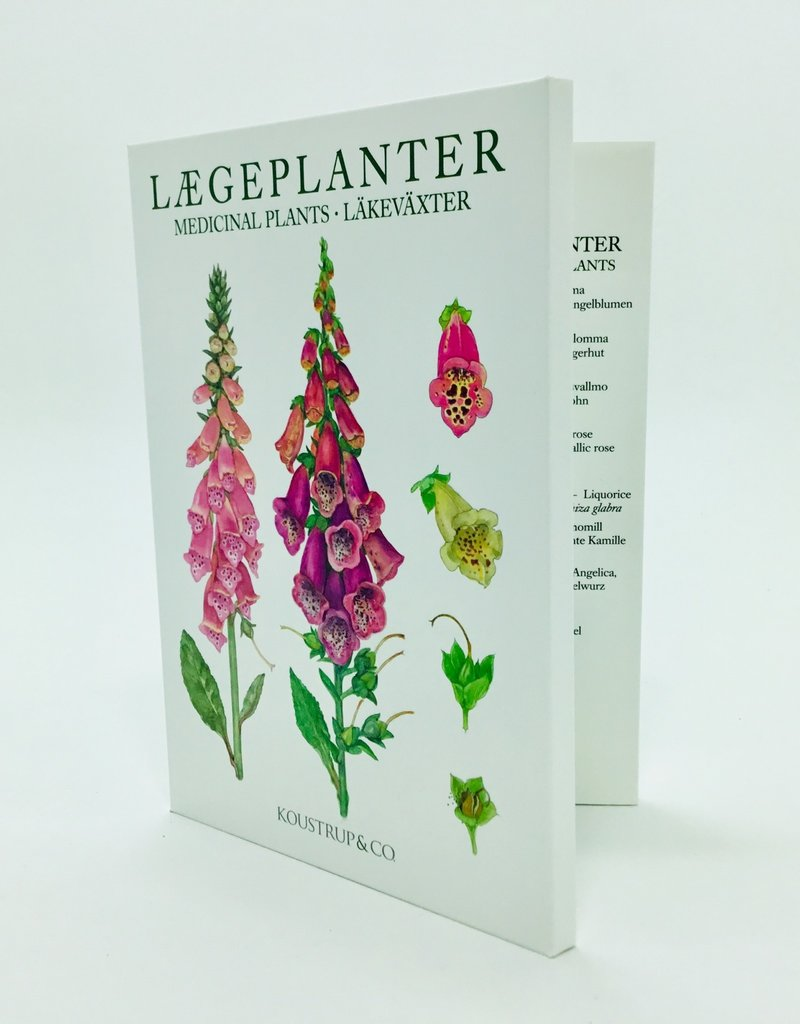 MEDICINAL PLANT NOTE CARDS
