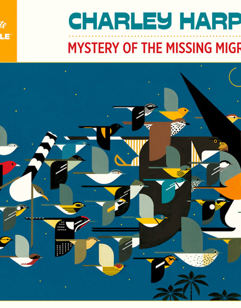 MYSTERY OF THE MISSING MIGRANTS PUZZLE