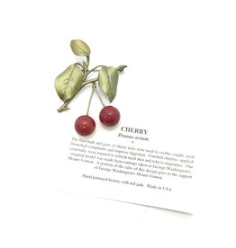 RED JASPER CHERRY BROOCH