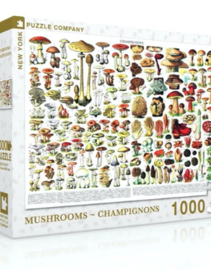 MUSHROOMS PUZZLE 1000 PIECE