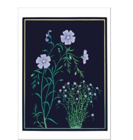 KATE KRASIN: BLUE FLAX NOTECARDS