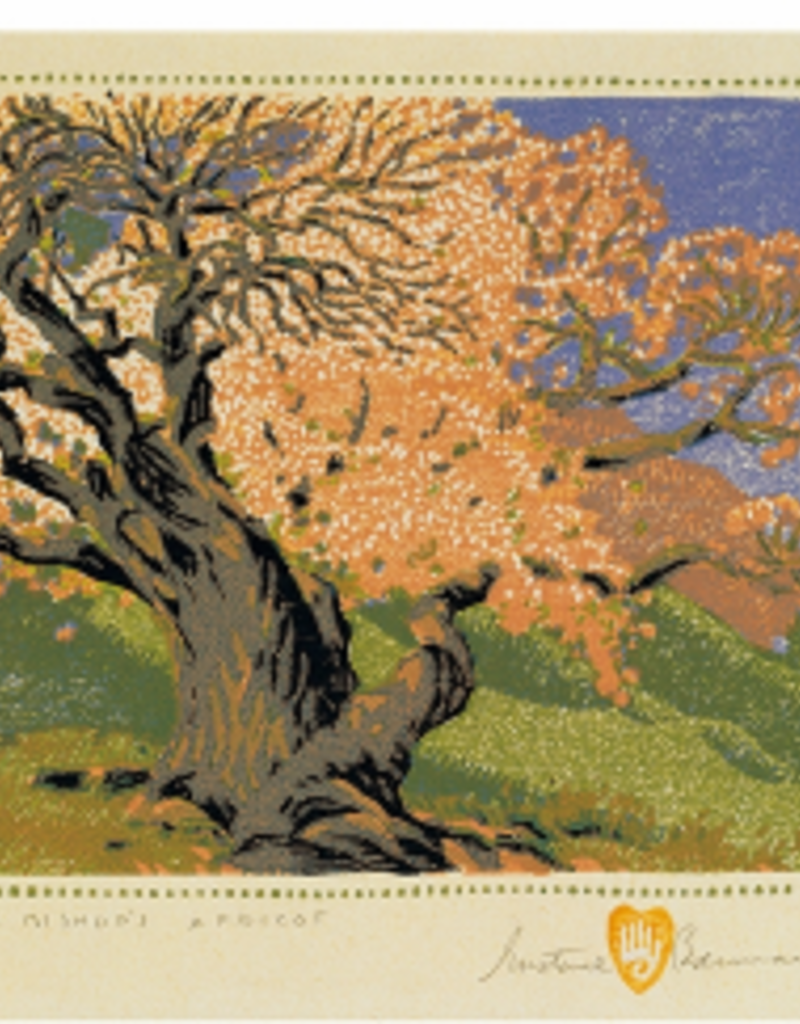 GUSTAVE BAUMANN: THE BISHOP'S APRICOT NOTE CARDS