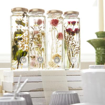Herbarium - 6 Styles