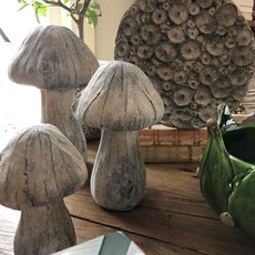 Cement Mushroom