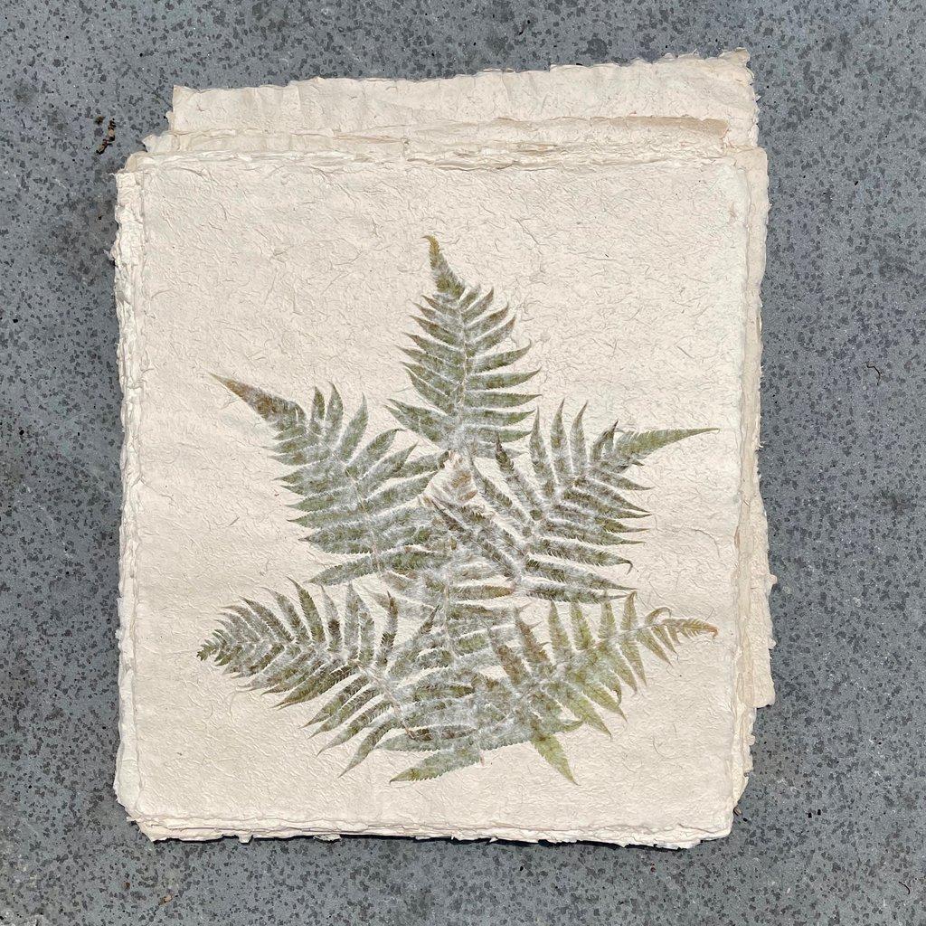 Flower Paper 20x18 - Fern
